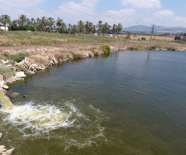 אגם קטן - הולכת מים